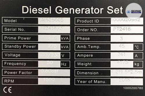 MultiphasePower Generator GMS250CS 6