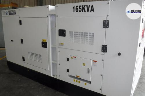 MultiphasePower Generator S165HCS 13
