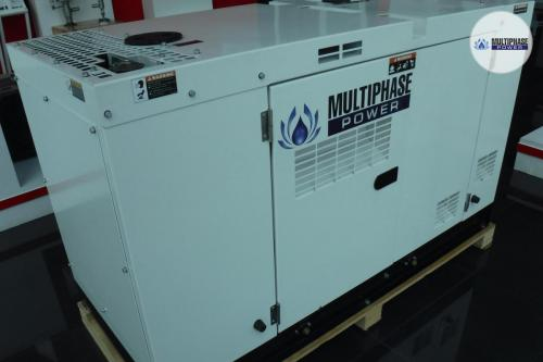 MultiphasePower Generator SDS10P5S 2
