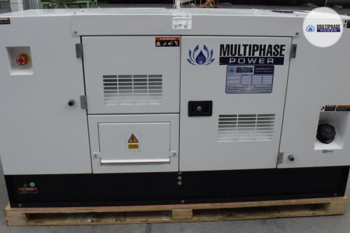 MultiphasePower Generator SDS20P5S 1