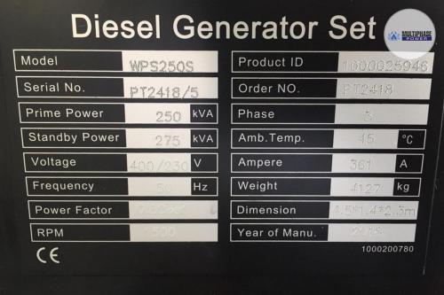 MultiphasePower Generator WPS250S 5